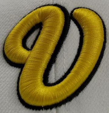 Do Any Type Of Embroidery Digitizing