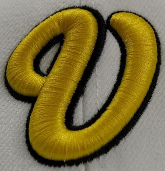 I will Do Any Type Of Embroidery Digitizing