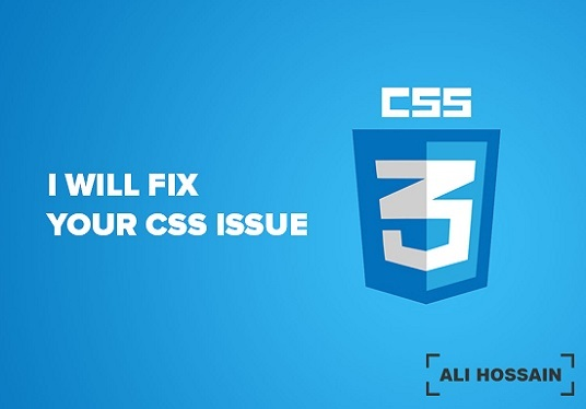 I will fix any Wordpress issue and CSS bugs