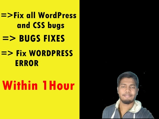 I will Fix all WordPress and CSS BUGS With in TIME