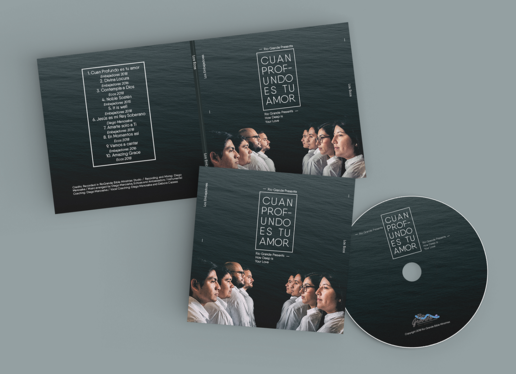 Design A Professional CD And DVD Cover