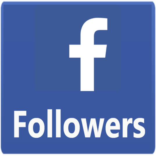 I will provide 250+ real Facebook page likes and followers