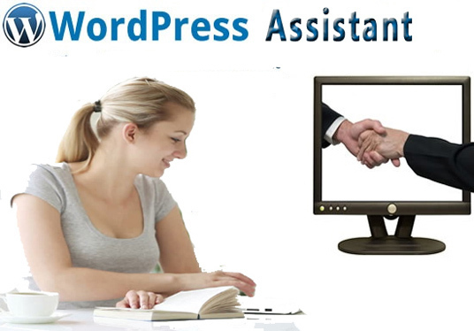 I will be your wordpress virtual assistant with customization