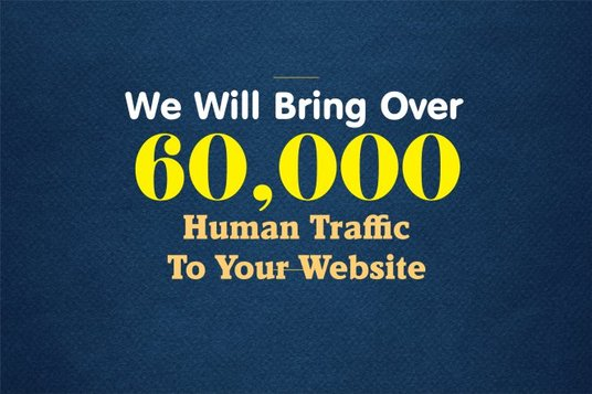 I will Drive Targeted Web Traffic Organic Visitors To Your Website In 30 Days