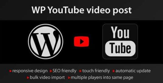 I will make Auto Post Youtube Music Channel  WordPress Website