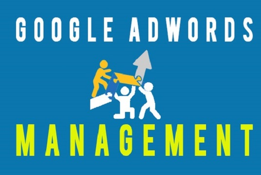 I will create google adwords and ppc ads for your website