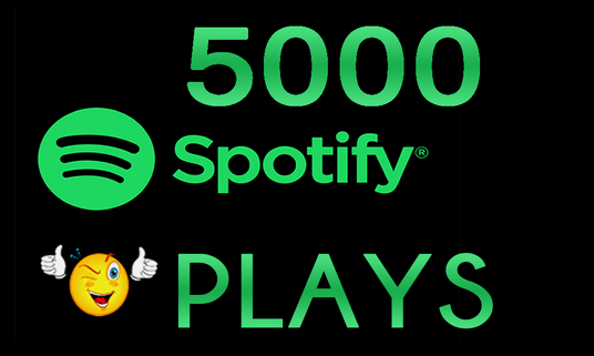 Give You 5,000 Spotify Plays And 500 Spotify Artist Followers