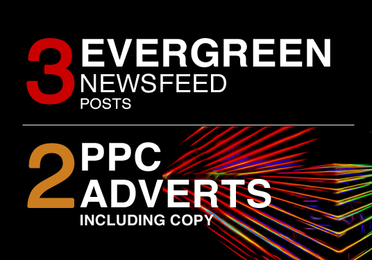 I will create 3 Facebook posts and 2 PPC adverts