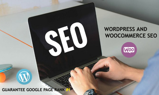 I will  do WordPress On Page  & Off Page SEO