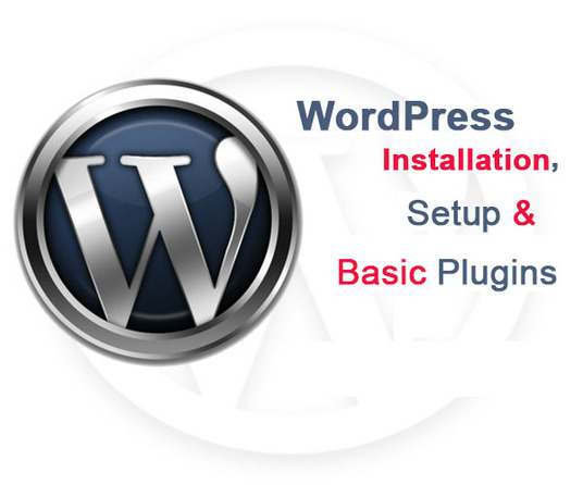 I will install WordPress theme and plugin