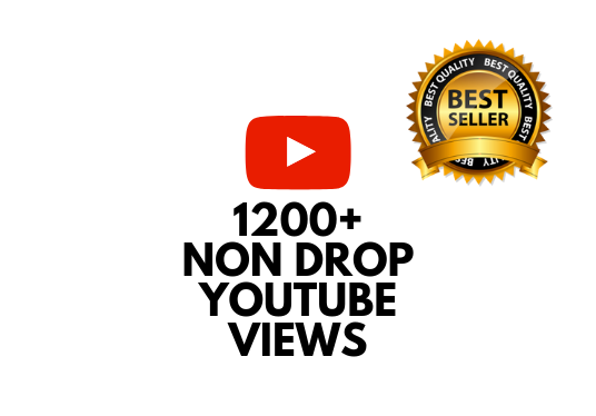 I will add 1200+ NON DROP views to your Youtube video
