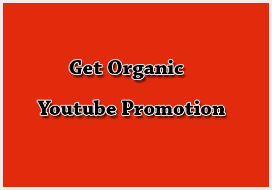Do Organic Youtube Video Promotion