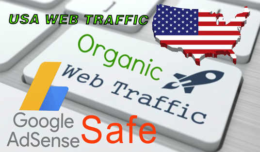 I will Drive 10000 Targeted USA Web Traffic To Website