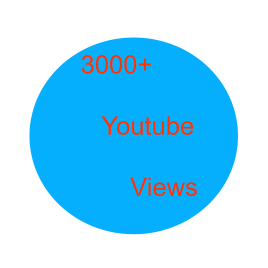 I will provide you 3000 you tube views