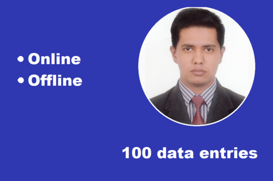 I will do 100 data entries