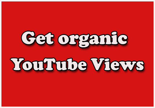 I will Do Organic  YouTube Views