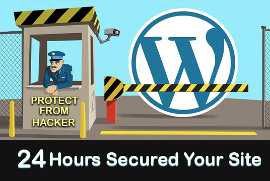 I will secure wordpress website and protect from hackers