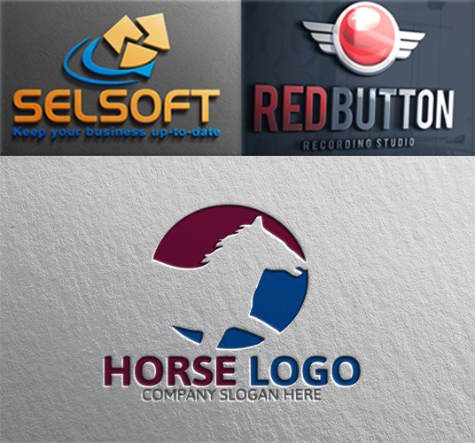 I will Design Professional Company Logo