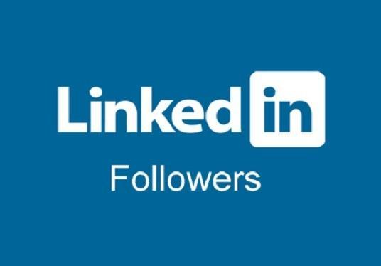 I will Provide 300 Linkedin Followers Summary