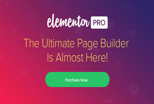 I will install the elementor pro page builder on your website