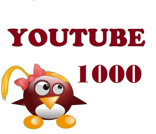 I will provide  real safe 1000 Youtube views