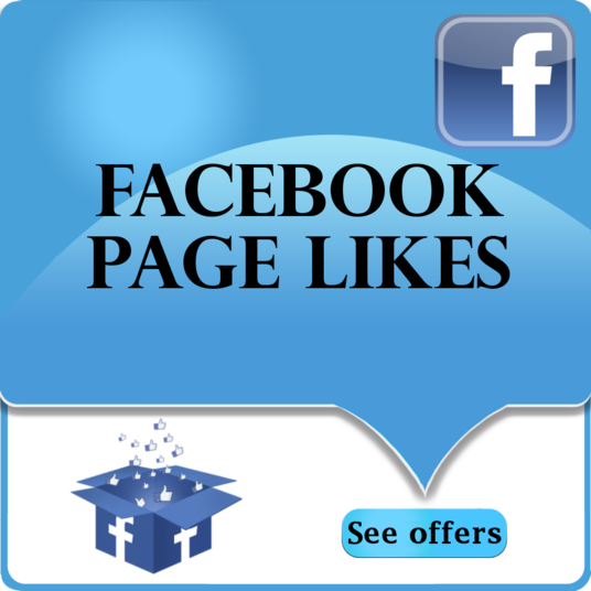 I will Provide You 1000 Facebook Fan page Likes