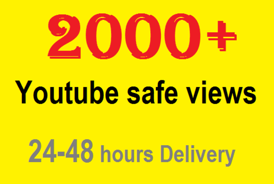 I will give you 2,000 youtube views to your youtube video,started within 48 hours