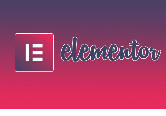 I will design a website using elementor page builder