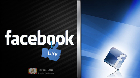 I will give you 500 Real Facebook Page likes