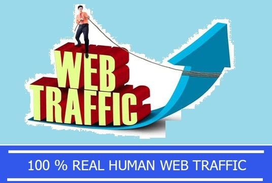 I will Drive Unlimited Real Traffic to your website for the Next 30 days
