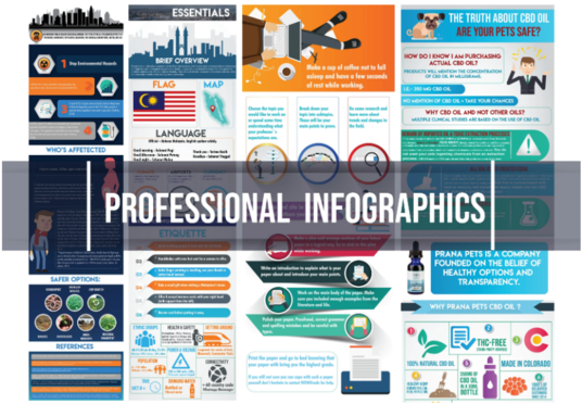 Create A Professional and Unique Infographic