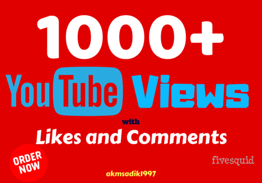 I will provide 1000+ Real YouTube Views along with Likes and Comments