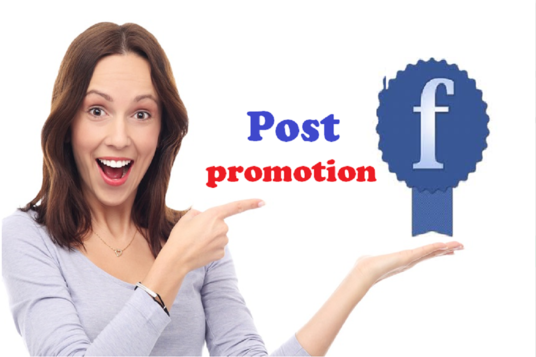 I will deliver 100 Facebook Followers