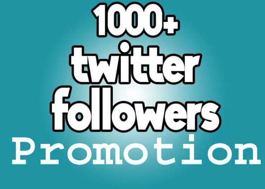 I will do organic 1000+ Twitter Followers Promotion