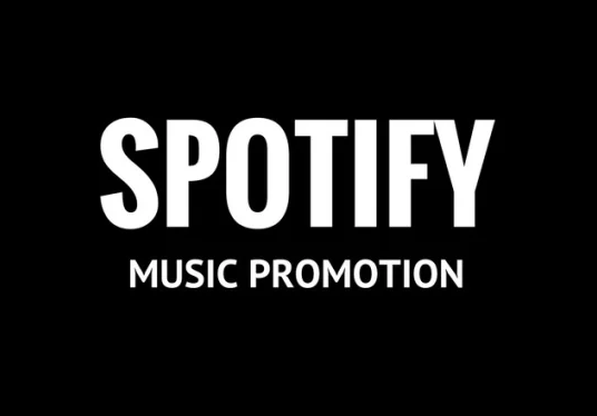 I will Do 2k Spotify Promotion And Organic Music Promotion