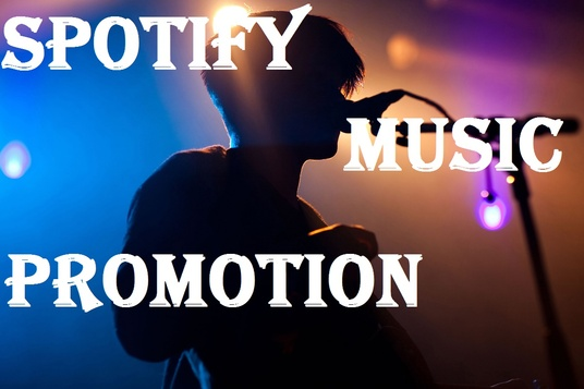 I will Do Music Promotion