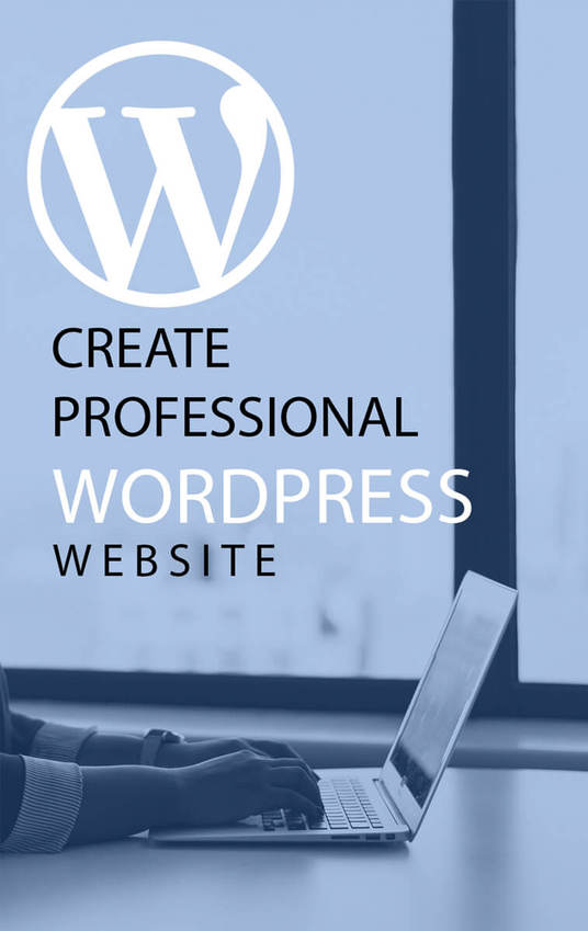 I will create professional wordpress website