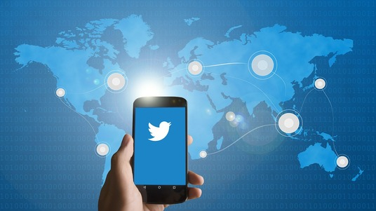 I will Professionally Manage and Grow your Twitter account through Marketing