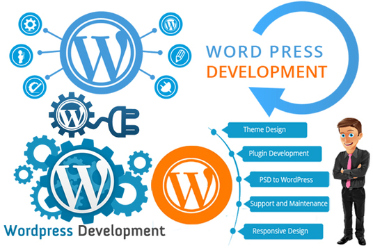 I will install word-press & theme