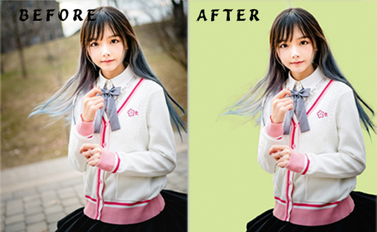 I will remove your image background very well and fast