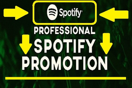 I will do authentic  Spotify and Soundcloud promotion to get 1500 + Plays