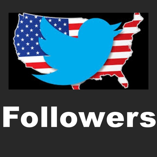 I will Give You Real Twitter Followers