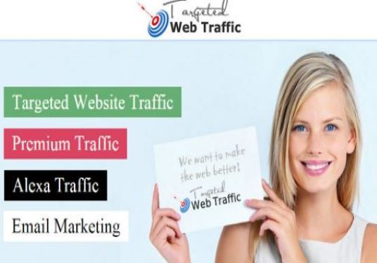 I will direct traffic to your website or blog