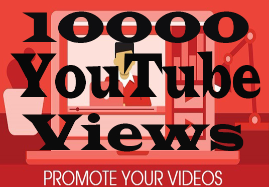 I will Provide 10000  Real & Non-Drop Youtube Views