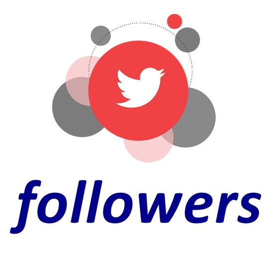 I will provide 100 real and active twitter followers
