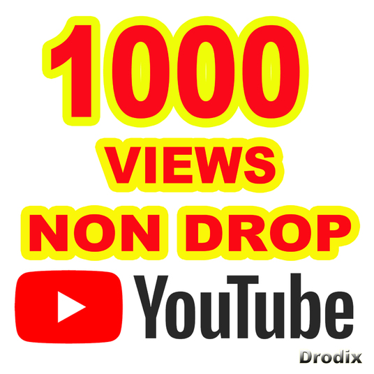 I will provide 1000 Views YouTube Non Drop