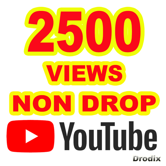I will provide 2500 Views YouTube Non Drop