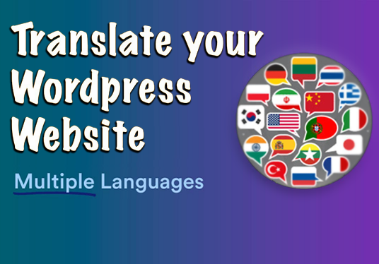I will translate your wordpress website to multi language