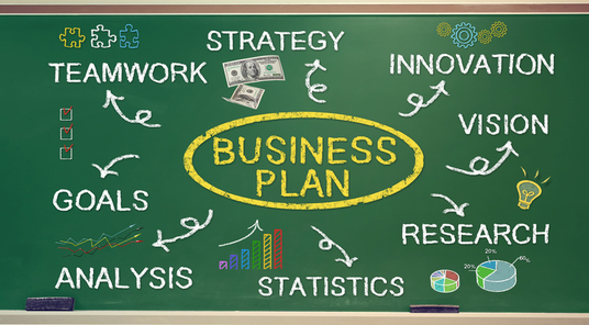 I will write a professional and comprehensive business plan