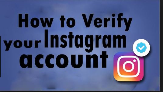 I will get you Blue Badge Verification  for Instagram Profile or Page